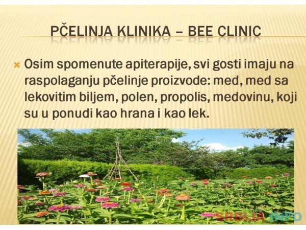 Pcelinja klinika-bee clinic