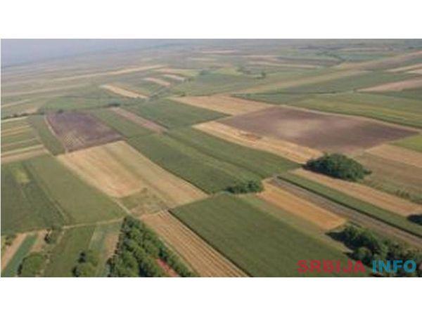 Poljoprivredno zemljiste Tubici-Kosjeric