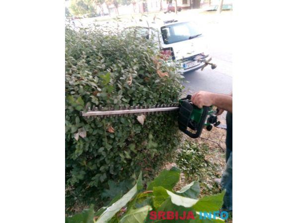 Košenje trave - Sečenje drveća