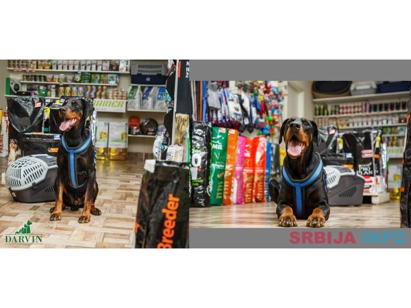 Veterinarska ambulanta i pet shop Novi Sad