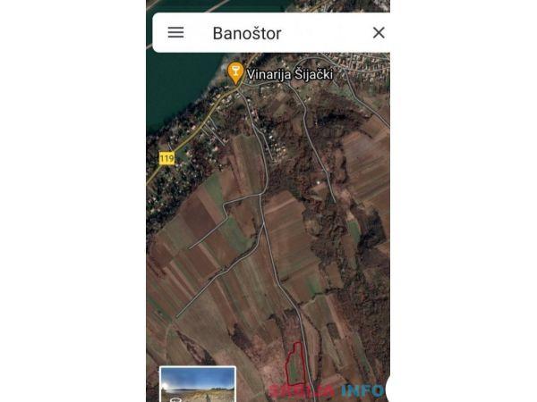 Vocnjak i vinograd u Banostoru-Fruska Gora