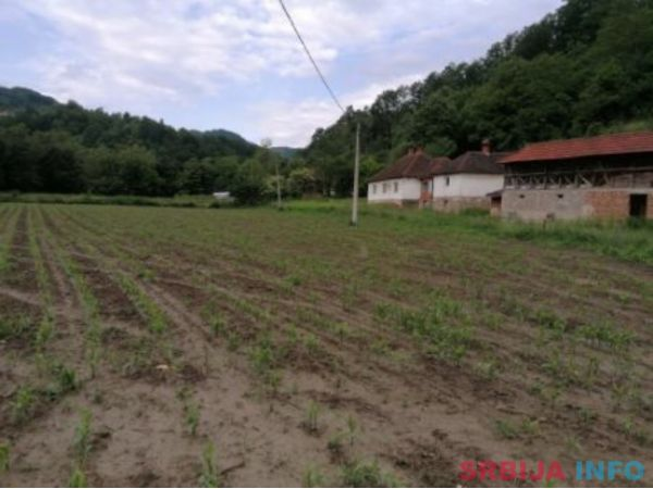Prodajem kucu sa imanjem u selu Carina