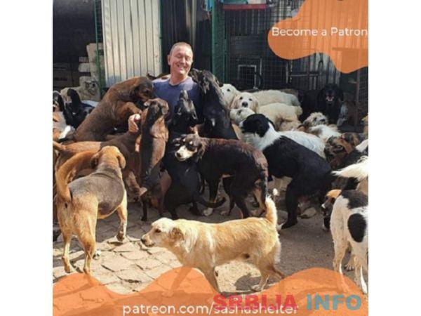 Potreban radnik u azilu za pse