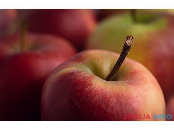 Plantaza jabuka