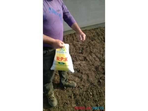 Sejanje trave - Postavljanje tepih trave