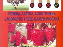 Rezidba, zaštita i agrotehnika jagodasti