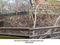 Ciscenje podruma i tavana Novi Sad