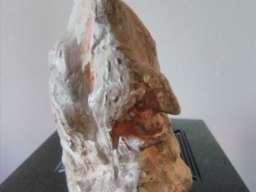 Skulptura cuvenog Matije Vukovica