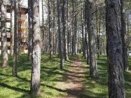 Apartman Sani Zlatibor