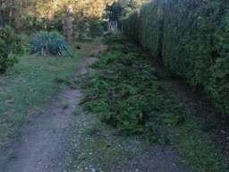 Kosenje trave secenje drveca krcenje placeva