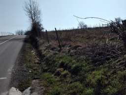 Prodaja zemljista Sepsin-Mladenovac